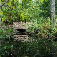 Reflections of a Rustic Bridge